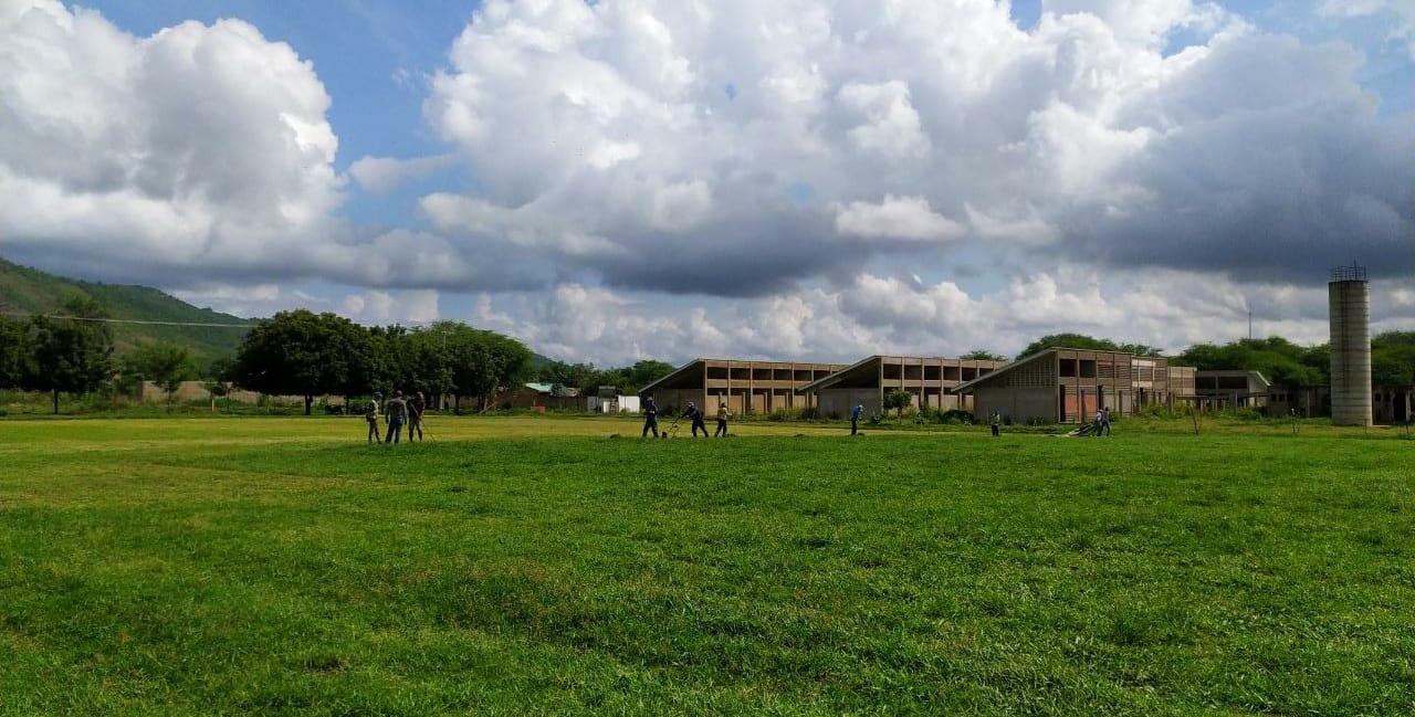 Campão do Horto recebe gramado que pertencia ao estádio Romeirão