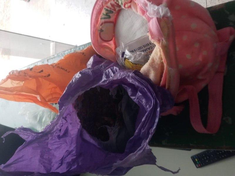 Polícia prende casal com maconha em barreira sanitária entre Juazeiro e Caririaçu