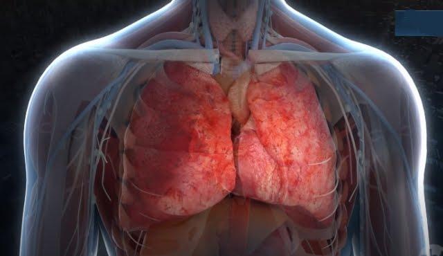 Covid-19: Eficácia de tratamento com anticoagulantes ganha destaque