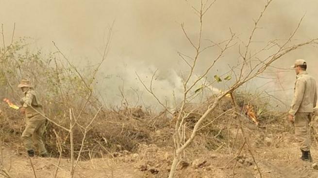 Forças de Segurança Nacional virão a MT ajudar a combater incêndios florestais