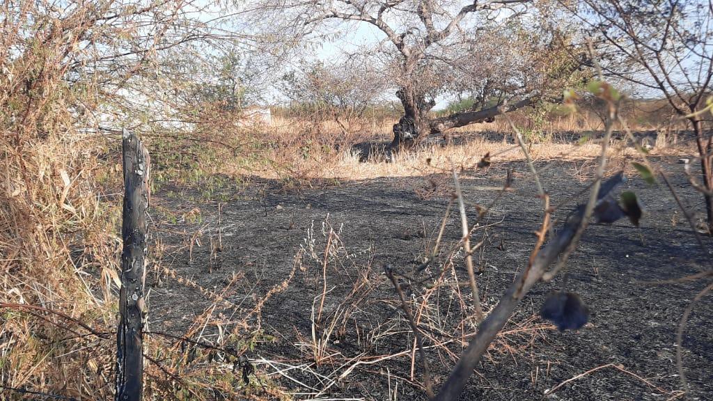 Bombeiros são transferidos de helicóptero após terem partes do corpo queimadas em incêndio