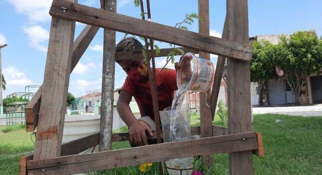 Criança de 11 anos adota praça de Iguatu e planta mais de 30 árvores em um mês
