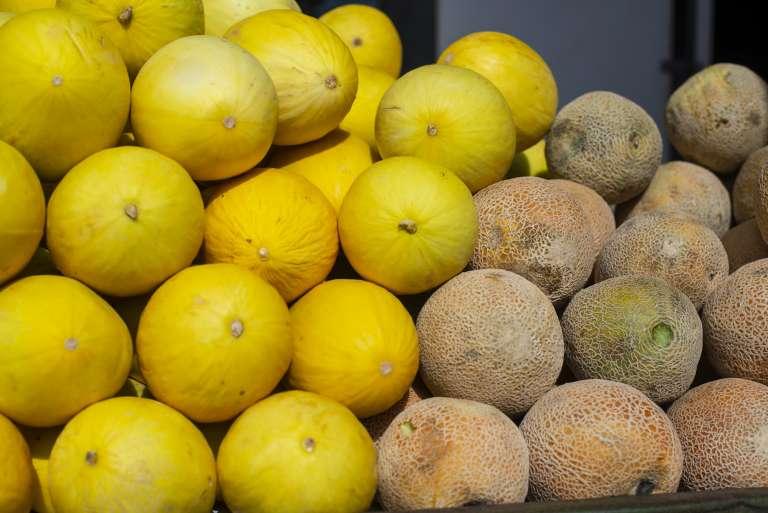 Preço do melão amarelo tem queda de 23,3% na Ceasa do Cariri